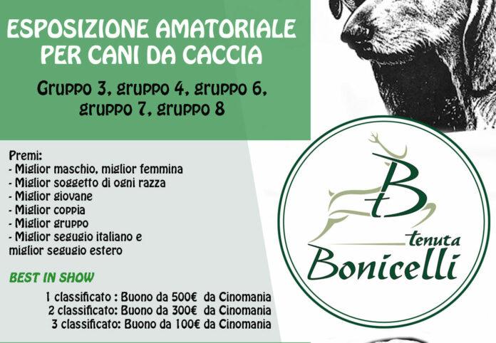 Bonicelli